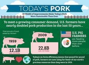 Today's Pork Infographic